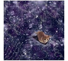 Cat In Space Galaxy Design by Melissa Park