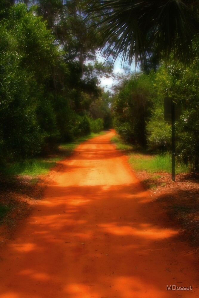 Dusty Red Road by MDossat