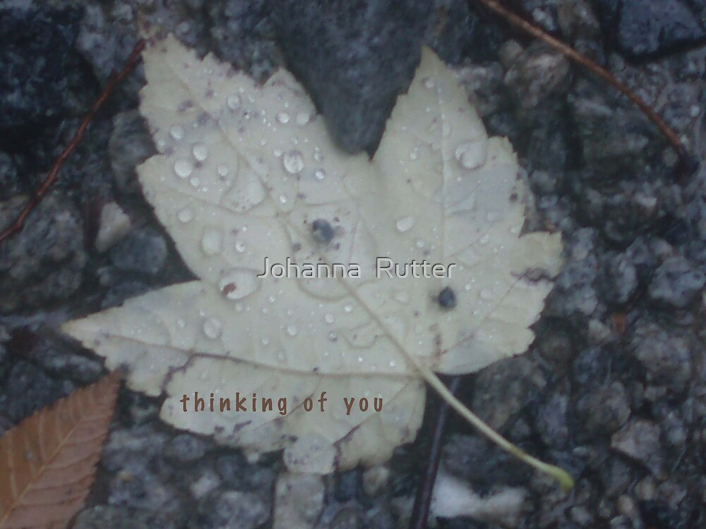 Thinking of you leaf by Johanna  Rutter