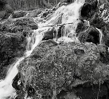 Black and White Big Spring Falls by Synevja