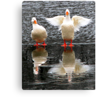 Hey, Watch the Wing! Canvas Print