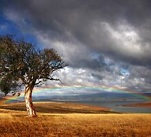 Rainbow's End by Annette Blattman