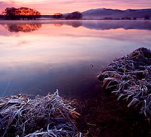 Frozen Pastels by DawsonImages