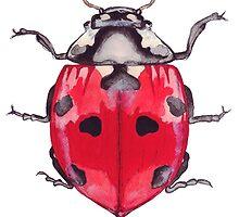 Ladybird by bridgetdav