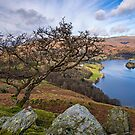 Grasmere View by David Lewins