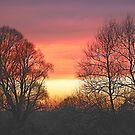 Winter Sunset  by James  Key