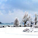 Niagara Winter by Tim Yuan