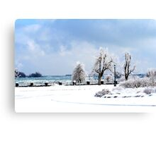Niagara Winter Canvas Print
