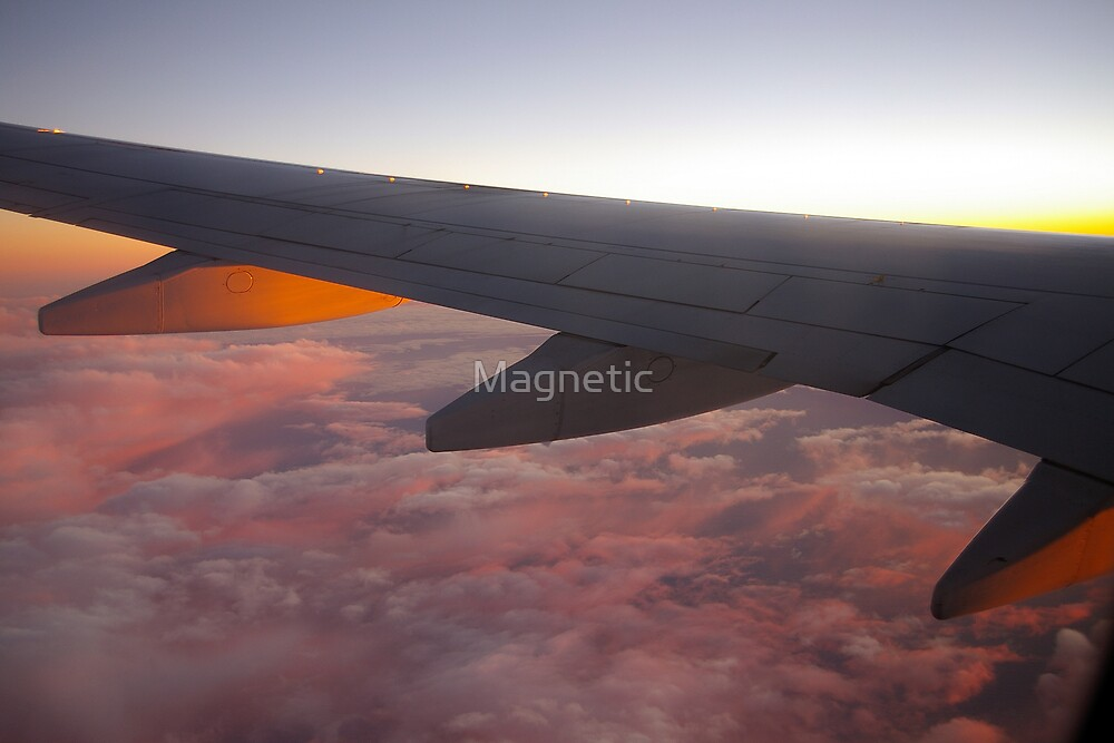 Sunset Wing by Magnetic