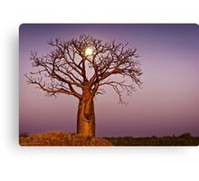 Twilight Moonlight Canvas Print