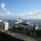Puerto Rico by Mike Pesseackey (crimsontideguy)