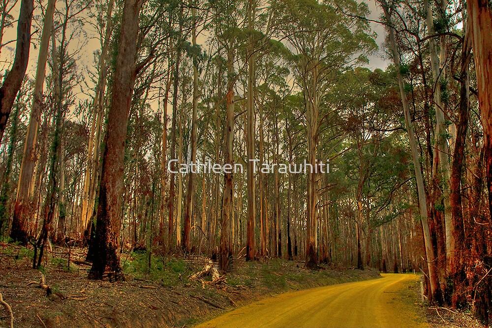 The Yellow Dirt Road by Cathleen Tarawhiti