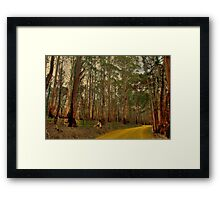The Yellow Dirt Road Framed Print