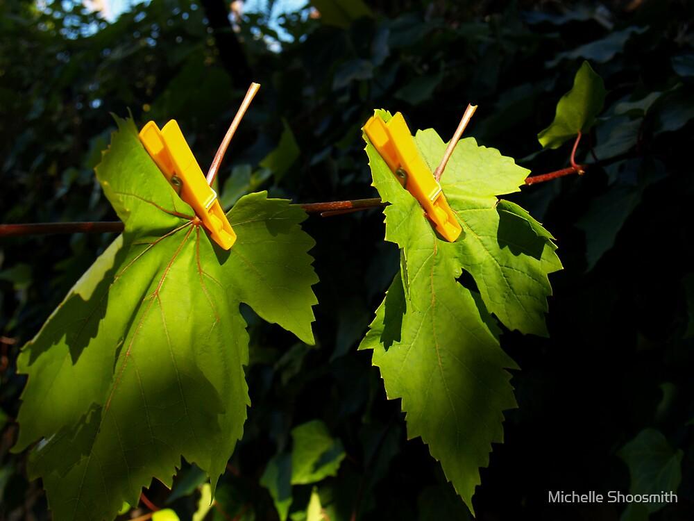 Wash Day In The Garden Of Eden by Michelle Shoosmith