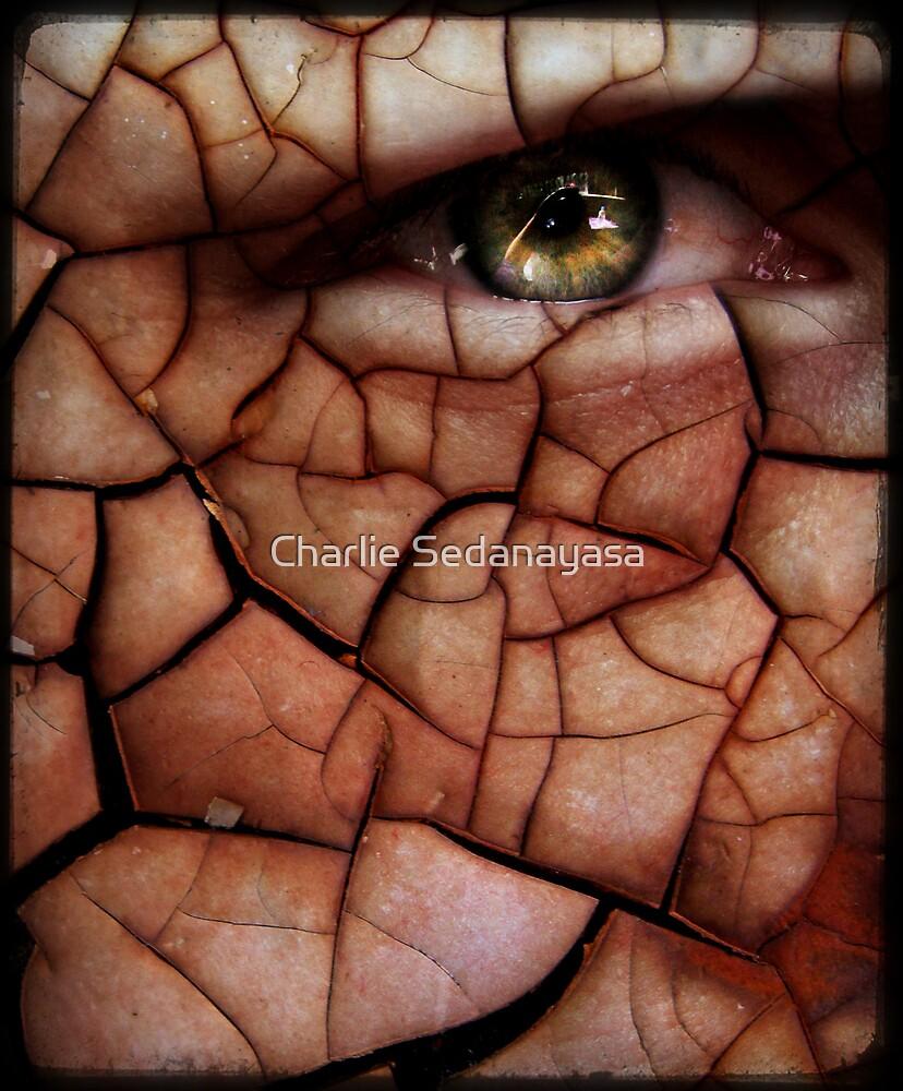 rust by Charlie Sedanayasa