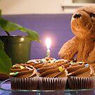 happy birthday! by dingobear