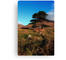 Mournes Glory Canvas Print