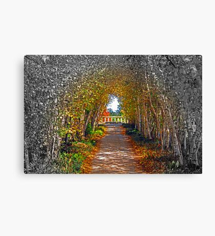 The Color Virus Canvas Print