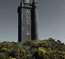 Scrabo Towering by Wrayzo