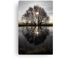 Tree Highlights Canvas Print