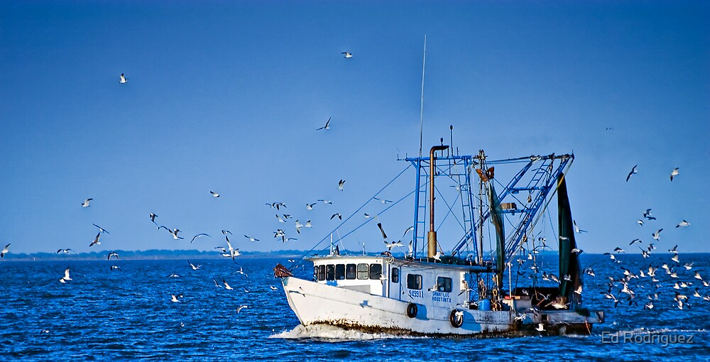 Fishing Boat by Ed Rodriguez