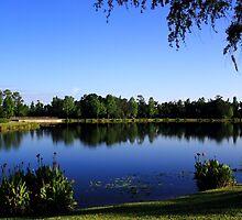 Celebration Lake by Wrayzo