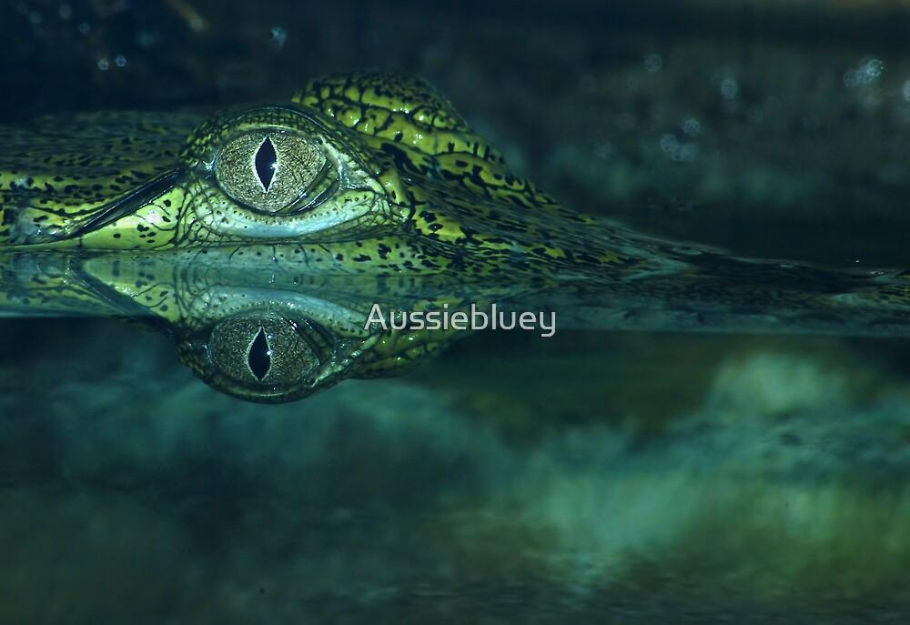 Freshwater Crocodile. by Aussiebluey