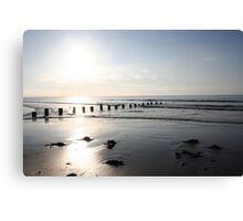 siloette sunset Canvas Print