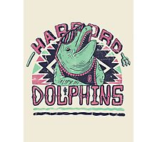 Harbord Dolphins  Photographic Print