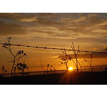 Barbed Wire Sunset Photographic Print