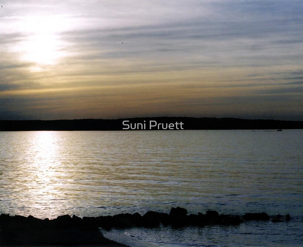 My Favorite Spot by Suni Pruett