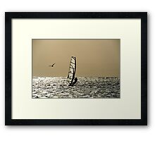 Wind surfer and seagull Framed Print