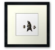 Bear Gains Framed Print
