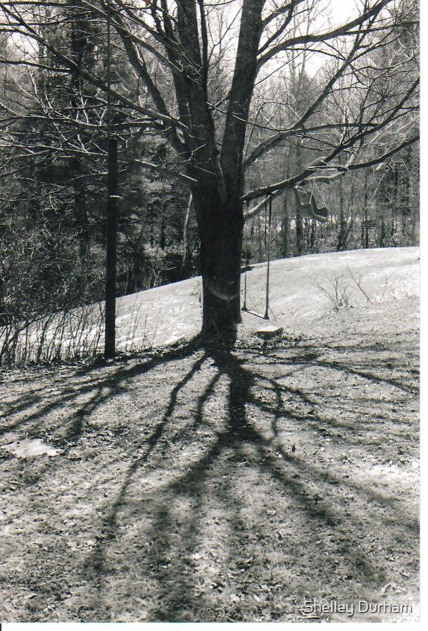 treepy by Shelley Durham