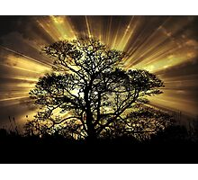 Raising Light  Photographic Print