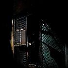 Step To The Fence by Paul Lubaczewski