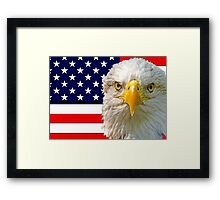 Flag and Eagle 2 Framed Print