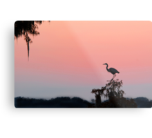 Great Blue Heron Silhouette at Sunset Metal Print