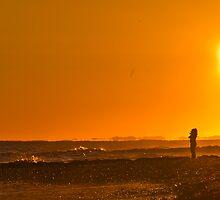 Morning Walk by Brian Puhl IPA