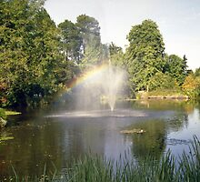 Garden Rainbow by William Morris