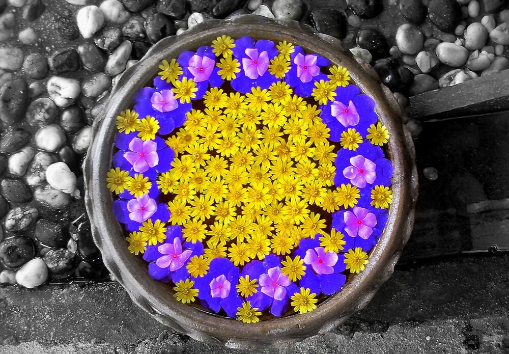 Floating flowers by K.D. Hemi