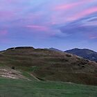 Worcester Beacon in the distance, Malvern Hills, Herefordshire England by Cliff Williams