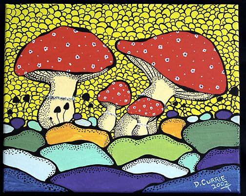 JT Mushrooms by David Currie