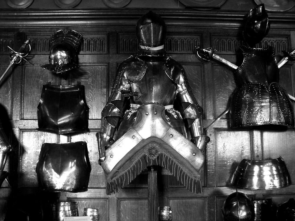 A Knight's Tale by BornToRoam