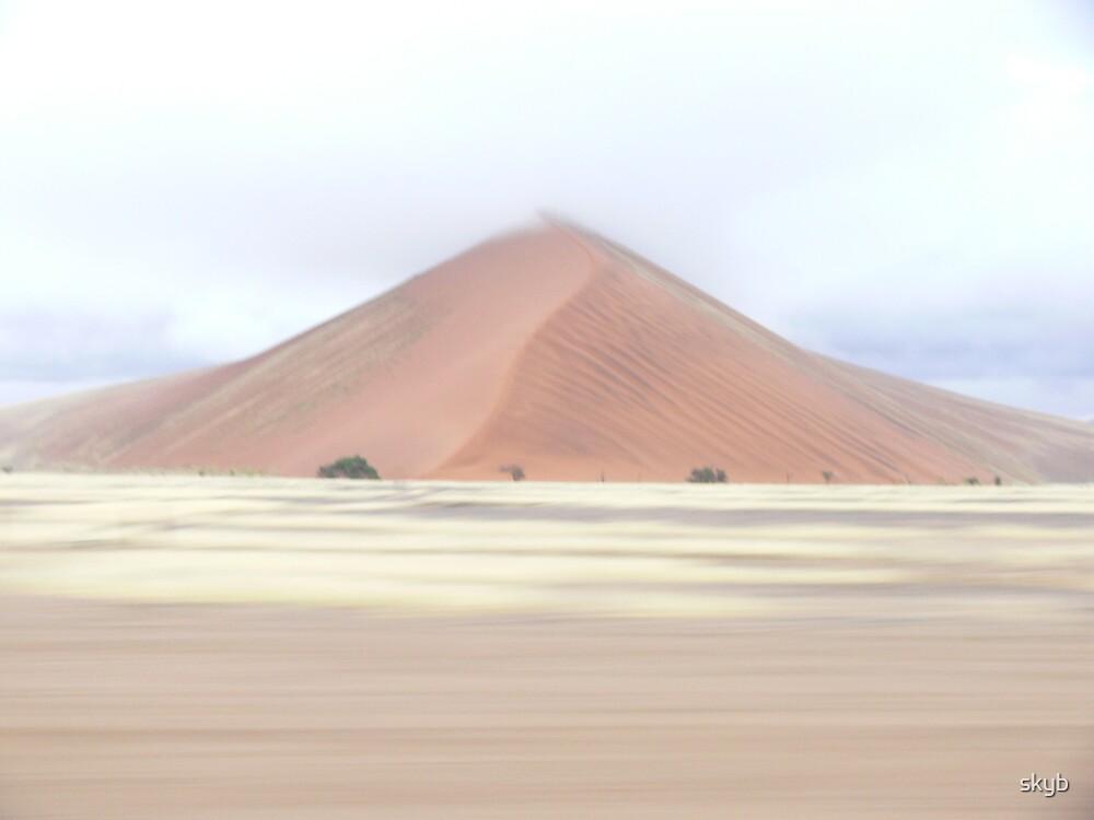 Sousseflea Sanddune by skyb