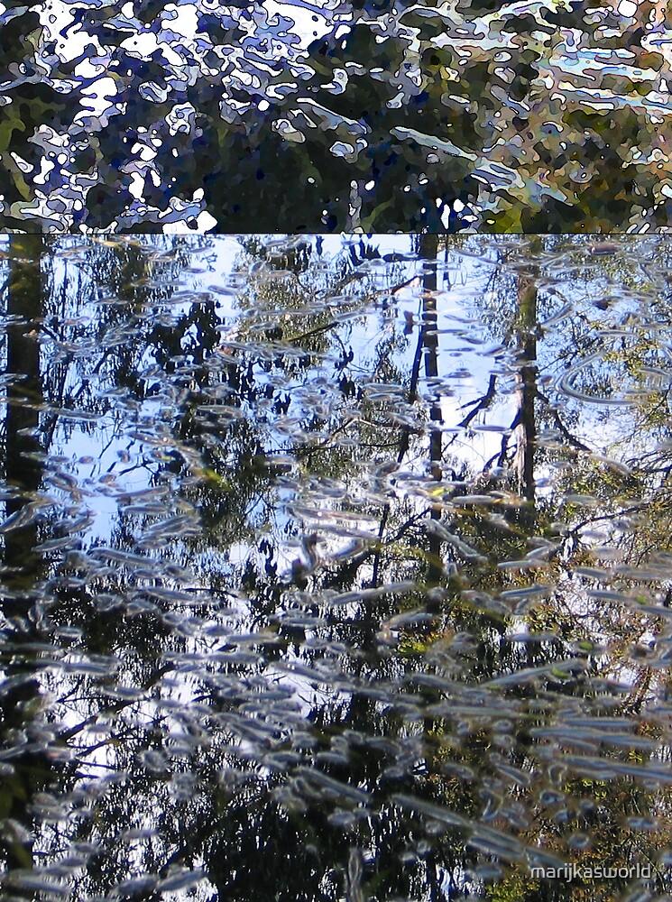 Reflection 2 by marijkasworld
