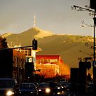 Street Scene Christchurch by chriso