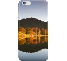 Buttermere Pines iPhone Case/Skin