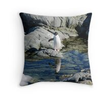 Reflecting Penguin Throw Pillow
