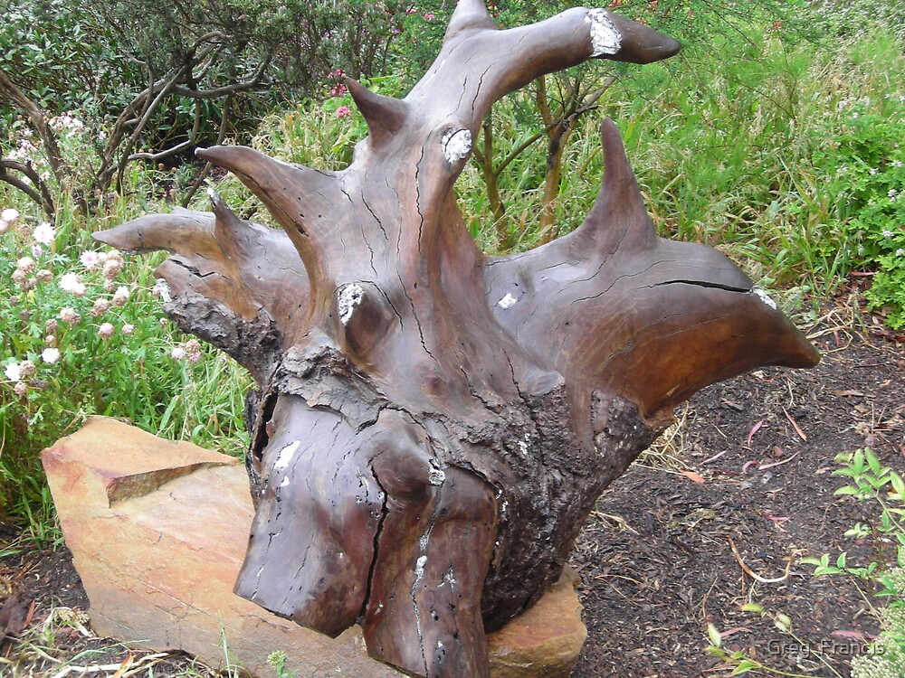 Wet Gum root sculpture by Greg  Francis